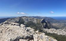 La vista de la Sierra de Tramuntana es espectacular. Rocas, pinos y al fondo, el mar.