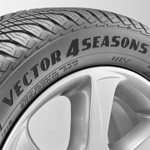 Un neumático para todo el año